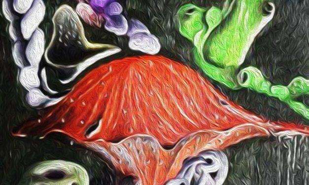 I miei quadri: Flora Venusiana