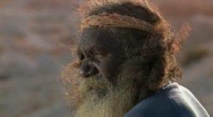 Dove sognano le formiche verdi, cinema australiano
