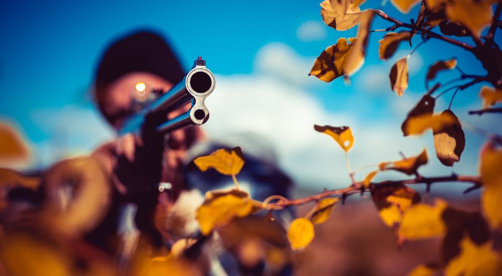 L'istinto della caccia