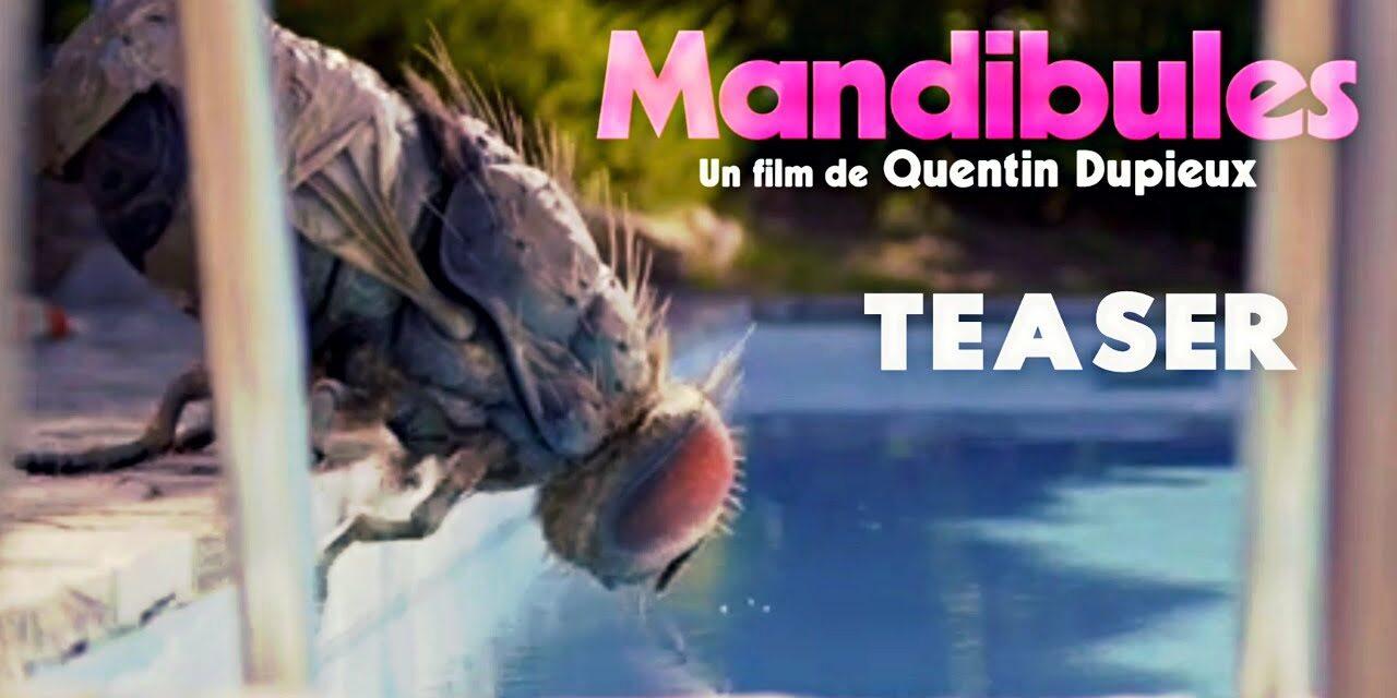 Mandibules è uno dei Film SNCCI selezionati per il 2021